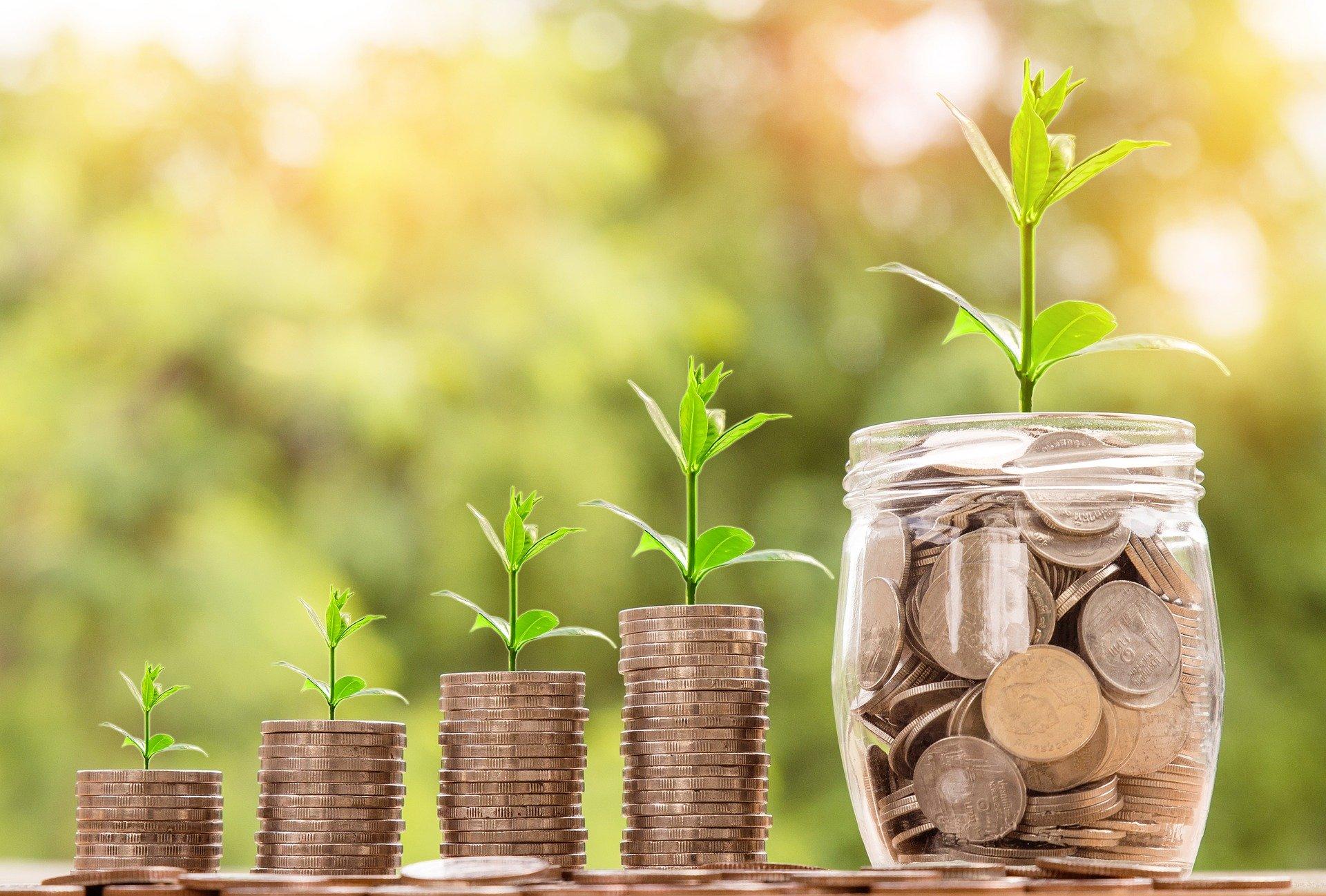 Минсельхоз: в ряде банков закончился лимит на кредиты по программе «Сельская ипотека» - фото 1